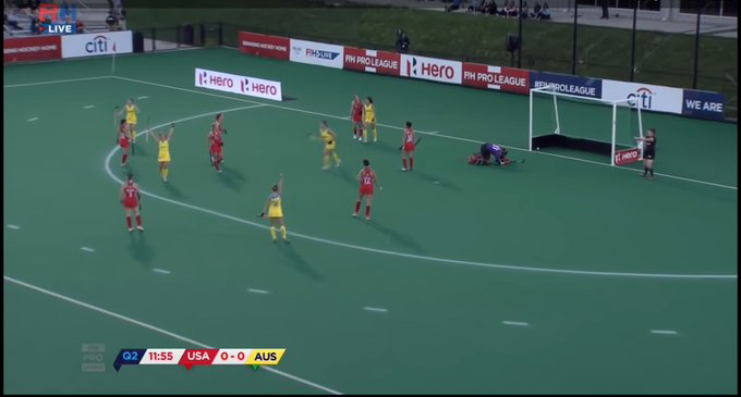 Camcarpets (3D Carpets) in the FIH games