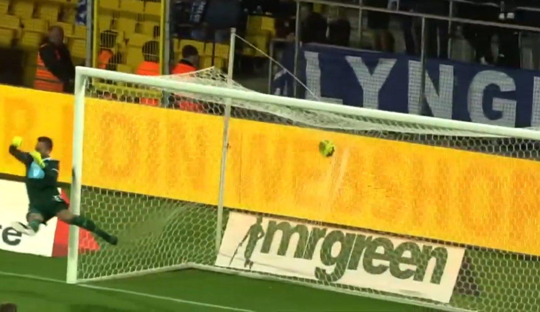 Camcarpets (3D Carpets) Danish Superliga AC Horsens